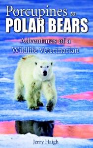 porcupines-and-polar-bears